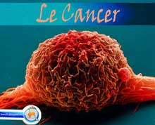Photo of Le Cancer